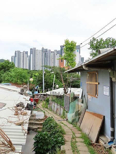 서울 강남구 개포동 산 156번지 달터근린공원 판자촌 빈민가 달터마을