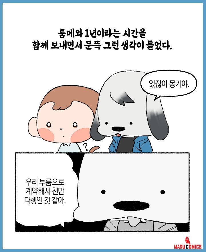 코믹스 몽키