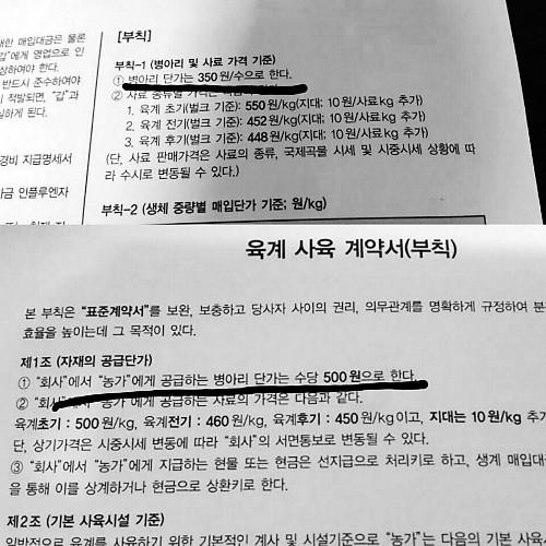 전남의 한 육계농가 '병아리 공급계약서'. 지난해 1마리에 350원이었던 것이 지난주 500원으로 43% 올랐다.   김현권 의원실 제공