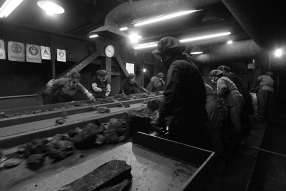 삼척시 도계읍 경동탄광 선탄부들이 괴탄(塊炭)을 골라내고 있다. [사진 박병문]
