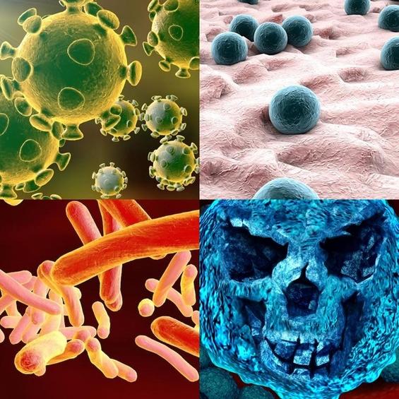 미국의 병원내 감염으로 인한 사망자는 에이즈, 유방암, 자동차 사고 사망자를 합친 수 보다 많은 것으로 알려져 있다. 사진은 병원 감염을 일으키는 바이러스와 박테리아들./사진=제닉스 로보틱스