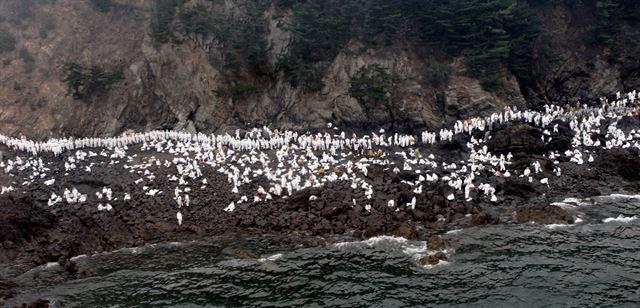 2007년 12월 7일 충남 태안 앞바다에서 발생한 허베이 스피리트호 기름유출 사고로 새카만 기름이 덮친 해안에서 하얀 위생복을 입은 수많은 자원봉사자들이 기름 제거를 하고 있는 모습. 충남도 제공