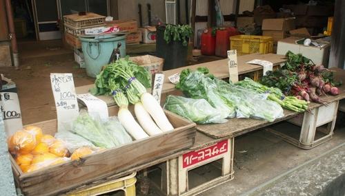 [교도=연합뉴스 자료사진] 무나 채소 잎 등이 진열된 도쿄도 고마에시에 있는 농산물직매장의 작년 3월 모습. 100엔 표시가 많다.