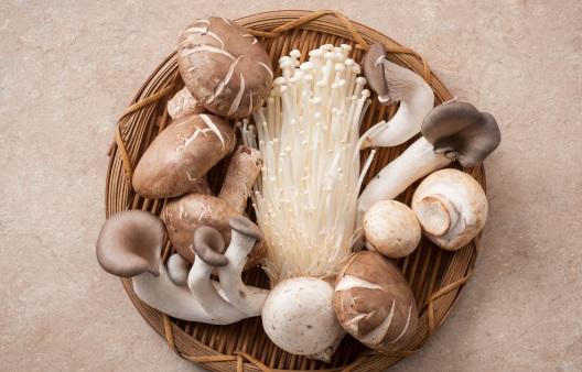 버섯 효능, 요리