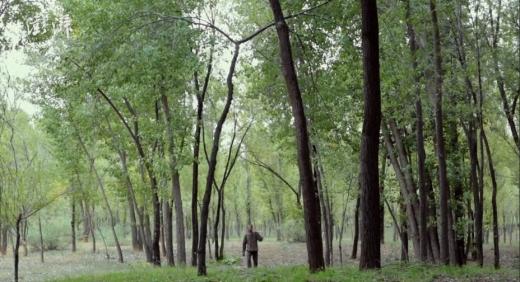 그는 돈을 벌려는 목적이 아니었기에 누구에게도 나무를 팔 생각이 없다고 잘라 말한다. (사진=펑파이뉴스)