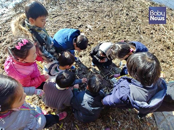 서울시(한강사업본부)는 겨울방학을 맞이해 12월 한 달간 한강의 겨울 생태를 통해 배우고 즐기며 추위를 날릴 수 있는 한강 생태체험 프로그램을 준비했다. ⓒ