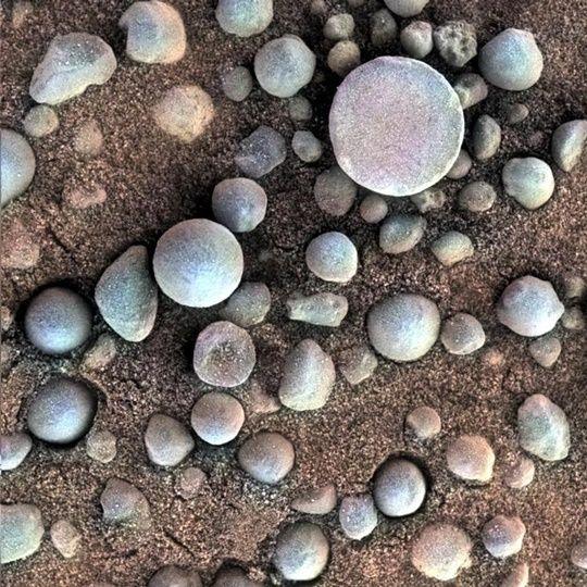 2014년 NASA는 화성에서 꼭 블루베리처럼 생긴 암석의 사진을 촬영해 공개하기도 했다. (사진=NASA)