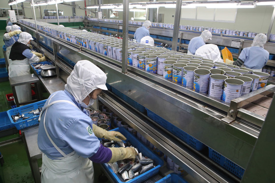 14일 경남 거제시의 한 수산물 가공공장에서 직원들이 고등어 통조림을 만들고 있다.송봉근 기자