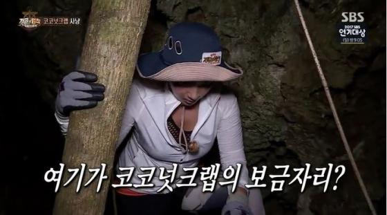 '정글의 법칙' 11.8% 시청률↓..종영 '푸드트럭' 5.3%