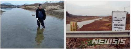 【광주=뉴시스】신대희 기자 = 18일 광주환경운동연합 등에 따르면 환경연합이 지난해 6월부터 최근까지 영산강 일대에서 하천 건강도 조사를 벌인 결과 승촌보·죽산보가 개방된 지난해 11월13일 이후 강 생태가 조금씩 제자리를 찾아갈 조짐을 보이고 있는 것으로 분석됐다. 사진 왼쪽은 환경연합 조사관이 영산강 일대서 조사를 벌이고 있는 모습, 오른쪽은 승촌보를 개방하자 드러난 평동천 둔치 모래톱과 하상의 모습. 2018.01.18. (사진 = 영산강유역환경청 제공)  photo@newsis.com