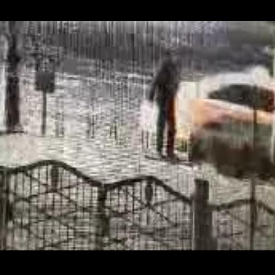 피의자 유모씨가 택시를 타고 주유소 근처에 내리는 CCTV 영상. 휘발유를 담기 위한 하얀색 통을 들고 있다. [사진 인근 상점 CCTV]