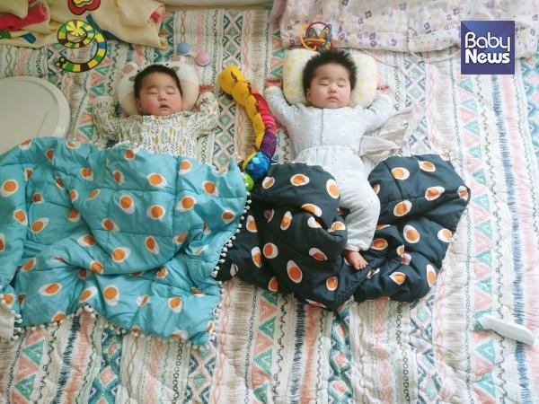 모처럼 긴 오침을 즐기는 쌍둥이들. ⓒ전아름