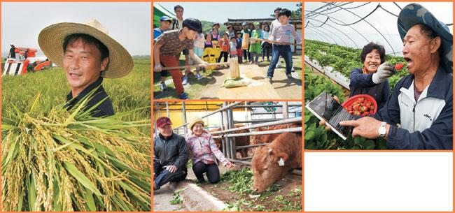 농림축산식품부는 올해를 '농업·농촌 대변화'의 시작점으로 삼고 국민이 안심하고 먹을 수 있는 먹거리 생산, 농가 소득 증대와 농촌 복지 증진, 그리고 청년 일자리의 원천이자 4차 산업혁명이 일어나는 현장으로서의 농업·농촌을 조성한다는 목표를 세웠다.  자료사진