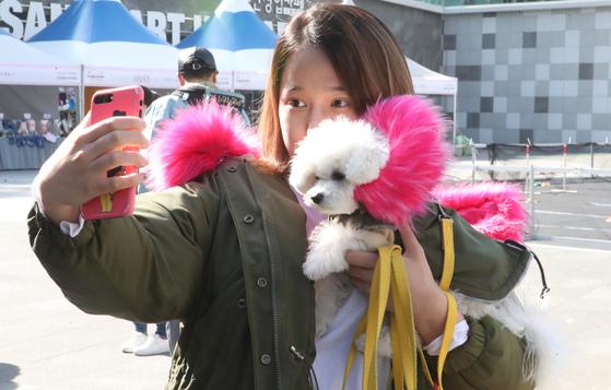 '2017 부산시 반려동물 산업박람회' 참가자가 반려견과 사진을 찍고 있다. [중앙포토]