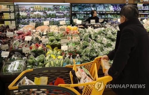 한파에 농산물값 급등 서울 시내 한 대형마트 채소 판매대 [연합뉴스 자료사진]