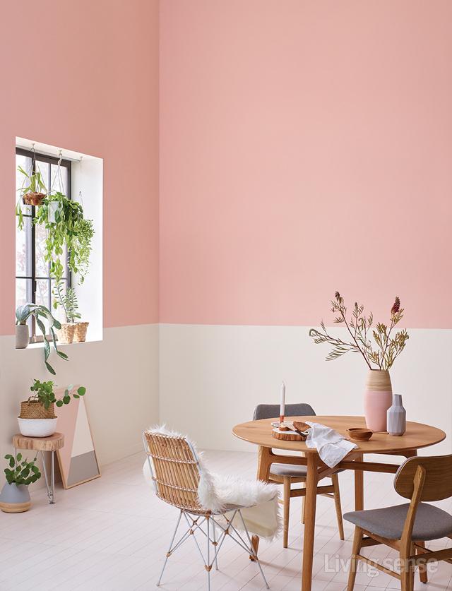 색의 품은 공간 COLORFUL HOUSE
