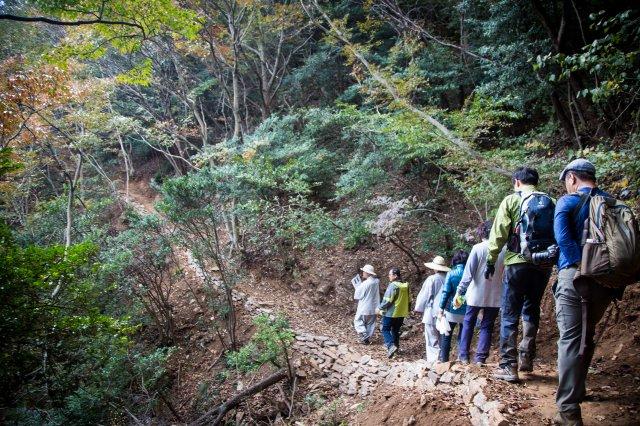 등산객들이 전남 해남군 달마산에 조성된 '달마고도'를 걷고 있다. 산 곳곳에 흩어진 갖가지 모양의 돌을 보는 재미가 있다. 강기태 씨 제공