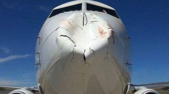 조류와 충돌한 항공기의 조종석 앞 부분이 심하게 찌그러져 있다. [중앙포토]
