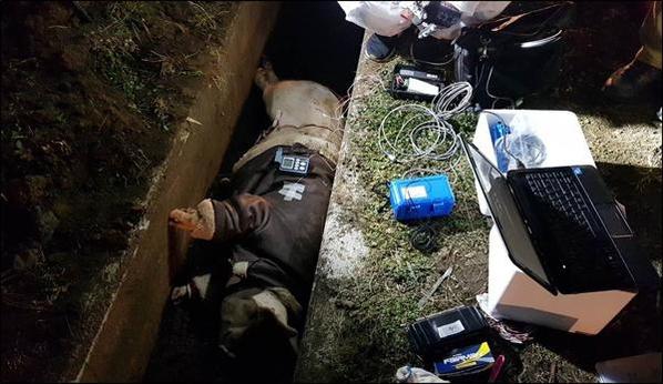 국내 최초 동물 사체 부패 실험이 시작된 지난 1월 29일, 무스탕을 입은 돼지가 보육교사 이모씨의 시신이 발견된 제주 애월읍 고내봉 근처 농지 배수로에 놓였다. /제주지방경찰청 제공