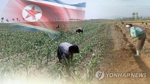 """북 식량문제 개선됐다지만…""""농업인프라 지원 필요""""(CG) [연합뉴스TV 제공]"""