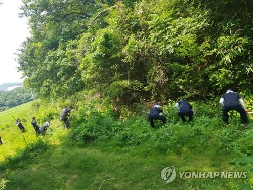 실종 여학생을 찾고 있는 경찰[연합뉴스 자료사진]