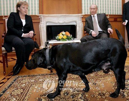 앙겔라 메르켈 독일 총리와의 회동 때 맹견을 풀기도 한 블라디미르 푸틴 러시아 대통령[EPA=연합뉴스 자료사진]