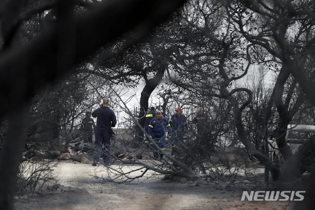 【마티(그리스)=AP/뉴시스】그리스 소방관들이 24일 아테네 북동쪽 마티에서 불에 타 죽은 시신들이 널려 있는 화재 현장을 조사하고 있다. 강풍으로 산불이 계속 확산되고 있는 가운데 최소 50명이 사망한 것으로 우려되고 있다. 2018.7.24