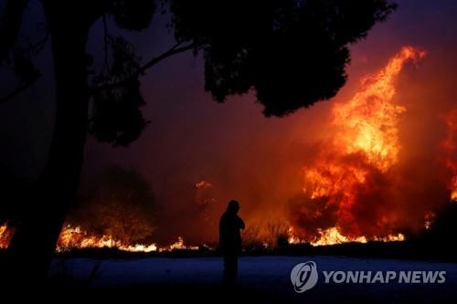 좀처럼 잡히지 않는 불길[로이터=연합뉴스]