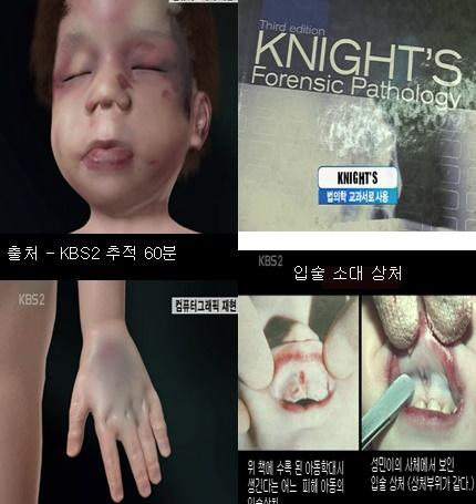 사진= '성민이 사건'을 보도한 KBS '추적 60분' 방송화면 캡처