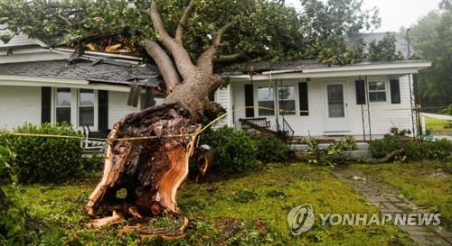 주택 위로 넘어진 나무 [로이터=연합뉴스]