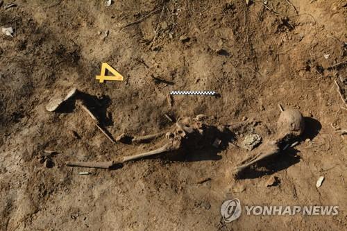 DMZ 화살머리고지서 전사자 유해 5구 추가 발견(종합)[온라인도박 토토스]