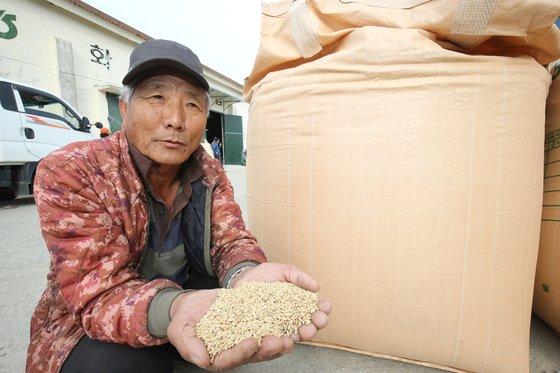 쌀 수매를 앞두고 전남 해남군 화원면 미곡종합처리장(RPC)을 찾은 장수익씨가 올해 수확한 쌀을 들어보이는 모습. [프리랜서 장정필]