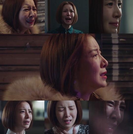 SKY 캐슬 윤세아(사진=방송화면 캡처)
