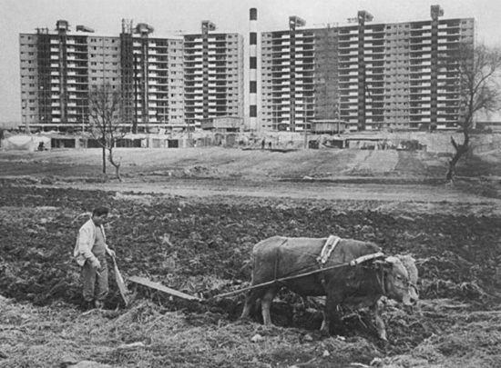 1978년 압구정동 현대아파트 (사진출처: 사진작가 전민조)