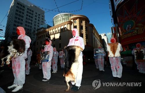 """'모피 퇴출!' (서울=연합뉴스) 홍해인 기자 = 동물권단체 케어 주최로 28일 오후 서울 중구 명동예술극장 앞에서 열린 '퍼 프리 코리아(Fur Free Korea)' 캠페인에 참가한 자원봉사자들이 고통 속에 죽어간 동물의 피를 상징하는 붉은색으로 페이스페인팅을 한 채 동물들의 털과 손팻말을 들고 캠페인 퍼포먼스를 펼치고 있다.       케어 측은 """"모피의 불필요성을 알리고, 잔인하게 희생되는 동물의 고통을 기리기"""" 위해 이번 캠페인을 준비했다고 설명했다. 2018.12.28 hihong@yna.co.kr"""