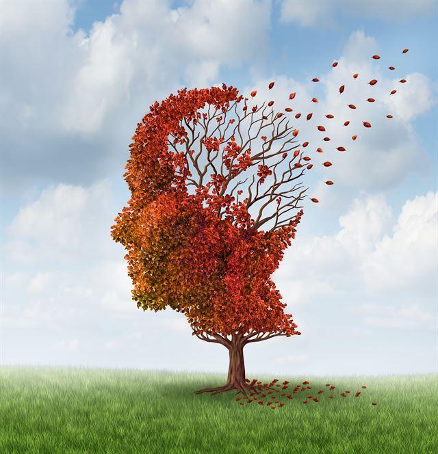 기억장애를 비롯한 인지기능장애가 있으면 필요한 검사를 진행하고 정확한 진단을 통해 진짜 병을 찾는 것이 무엇보다 중요하다. 게티이미지뱅크