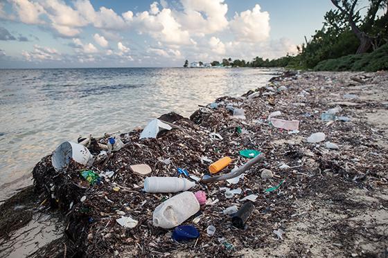여러 연구에 따르면 플라스틱 쓰레기가 바다쓰레기의 80%를 차지한다. /사진=게티이미지