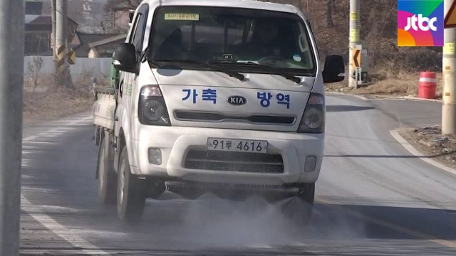 """'명절' 넘긴 구제역 """"남은 1주일이 고비"""".. 방역에 총력[세이브 토토 레프리 토토]"""