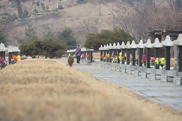 인천가족공원의 묘지 시설 ⓒ 시사저널 박은숙 기자