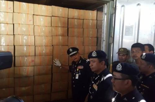 2019년 2월 7일 말레이시아 사바 주 경찰 당국이 코타키나발루 시내 공장의 선적용 컨테이너에서 발견된 수천 상자 분량의 냉동된 천산갑 사체를 살피고 있다. [일간 더스타 홈페이지 캡처=연합뉴스]