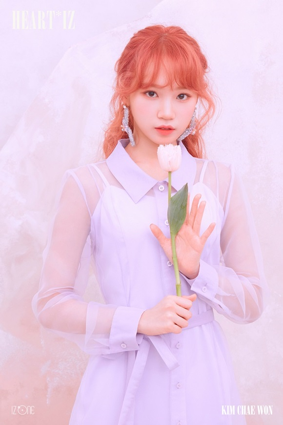 4월 1일 컴백 아이즈원, 김채원·이채연·미야와키사쿠라 사진 공개