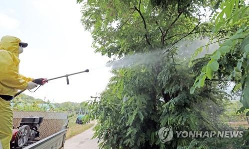 '따뜻한 겨울 탓'..외래 돌발해충 부화율 20% 이상 늘어[스피카 러시안룰렛 가사|스포츠경정]