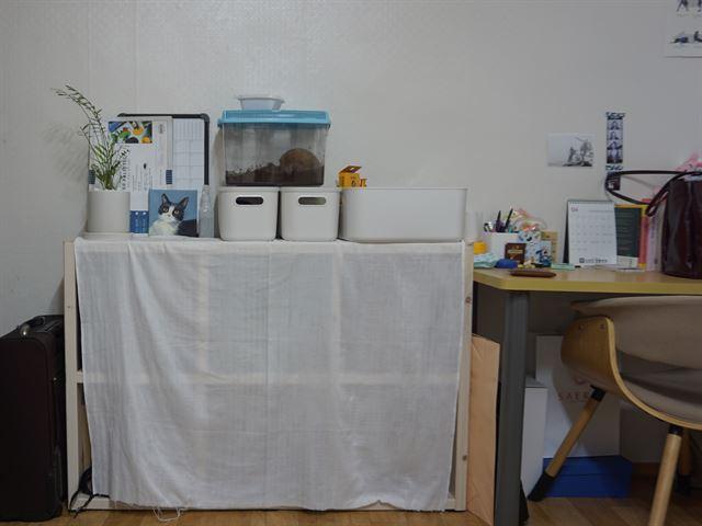 거실 한 켠에 이혜림씨가 이사온 후 새로 들여온 수납장과 김민지씨의 책상이 나란히 놓여 있다.