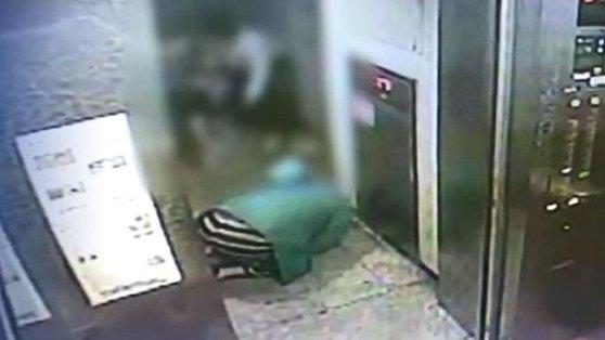 부산의 한 아파트에서 큰 개가 30대 남성의 급소를 무는 사건이 발생했다. 사진은 엘리베이터 CCTV에 찍힌 사건 당시 모습.[JTBC]