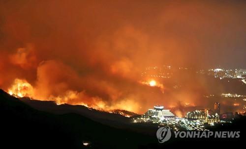 강원 산불 [연합뉴스 자료사진]