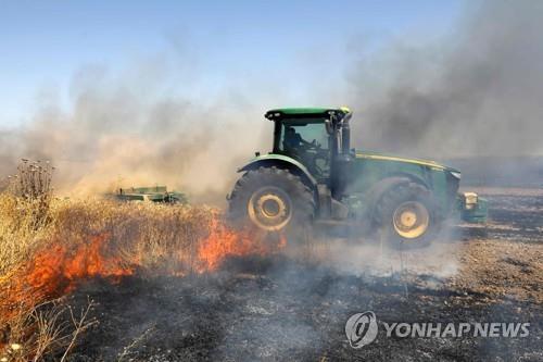 가자지구에서 날아온 인화성 물질로 불붙은 이스라엘 들판 [AFP=연합뉴스]