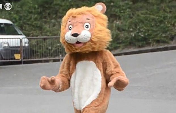 """""""누가 봐도 사람"""" 日동물원 사자 포획훈련네티즌 포복절도"""