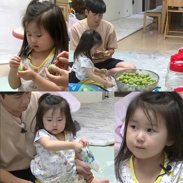 홍경민이 딸 라원과 함께 매실청 만들기에 도전한다. KBS2 제공