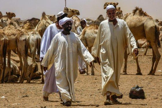 수단 옴두르만의 한 시장에서 지난 10일(현지시간) 현지인들이 낙타 구매를 위해 주변을 둘러보고 있다. [AFP=연합뉴스]