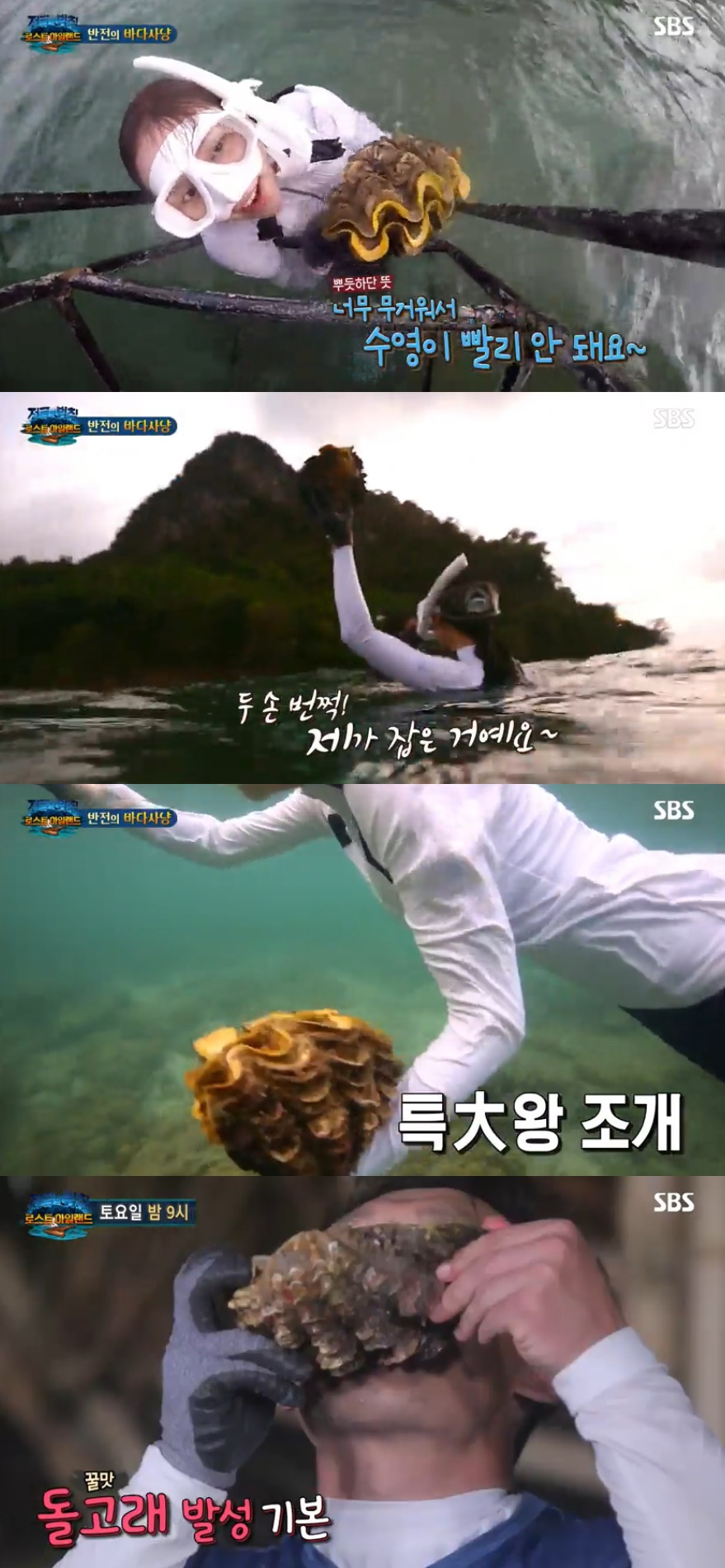 [단독]SBS, 18일 '정글' 대왕조개 논란 인사위원회..징계수위에 관심[인기릴게임|나인 토토]